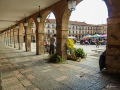 35 de 365 (pico_de_la_miel) Tags: espaa mercado leon plazamayor caminodesantiago castillayleon