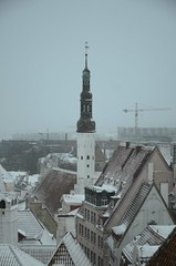 Kui Tallinnas sajab lund ... (anuwintschalek) Tags: schnee winter snow tallinn estonia january churchtower snowfall lumi altstadt oldtown eesti estland talv vanalinn toompea 2016 kirchturm schneefall phavaimu aussichtsplattform d7k vaateplatvorm lumesadu kirikutorn kohtuotsa nikond7000 sightseeingpoint 18140vr
