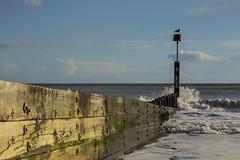 Groyne (tim.clarke37) Tags: blue sea sky sun beach seaside waves sunny dorset groyne bournemouth chine groynes beachscape blueocean durley