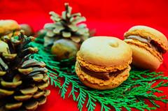 DSC_1183 (La Marquise de Jade) Tags: red green rouge cuisine pin vert nutella sapin pomme sucre gourmandise branche fondant douceur gourmand macaron ptisserie moelleux sucr dlice croquand