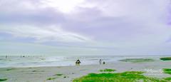 Pantai Redang, Sekinchan (@RmnaRz) Tags: canon malaysia lonelyplanet flick selangor markii sekinchan tripadvisor 7d2 canon7dmkii 7dmkii 7dmarkii pantairedang canon7dmarkii