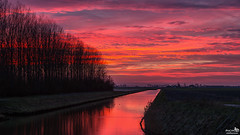 On my way home, I had to stop for this sky (BraCom (Bram)) Tags: trees sunset holland netherlands clouds canon zonsondergang bomen glow ditch widescreen nederland wolken nl polder 169 refelctions gloed sloot zuidholland goereeoverflakkee aftersunset spiegeling southholland dirksland canonef24105mm bracom canoneos5dmkiii