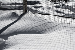 Meshed Uo Shadow (James P. Mann) Tags: winter snow fence shadows mesh drift