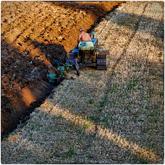 Late afternoon labour (Eric@focus) Tags: tractor man hot work afternoon hard caterpillar labour farmer agriculture plough lavoro lemarche agricolo toprural