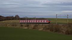 Noch einige Jahre werden die Zge der Baureihe 420 bei der S-Bahn Mnchen eingesetzt werden. Frisch aus der Lackierkabine in Nrnberg kehrt 420 463 zurck in seine neue Heimat, hier bei Hebertshausen kurz vor Mnchen (Frederik Buchleitner) Tags: 420 db sbahn bahn hebertshausen et420 sbahnmnchen berfhrung baureihe420 dbbahn betriebsfahrt 420463