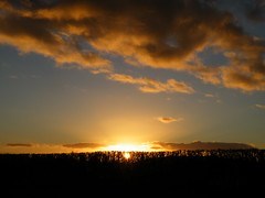 sunset (rospix+) Tags: uk blue light sunset sky orange sun yellow wales clouds countryside hedge february 2016 rospix