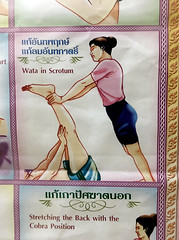 Wata in Scrotum (cowyeow) Tags: china shop poster asian hongkong weird funny asia cobra purple drawing chinese balls engrish massage thai pornography  kowloon position funnysign scrotum wata badtranslation thaimassage kowlooncity funnychina cobraposition