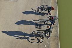 Shadows (heinzkren) Tags: vienna wien street shadow bike sport wasser rad bikes kai biker mann ausflug kanal frau ufer schatten freizeit fahrrad fahrzeug jugend radweg metamorphose donaukanal kaimauer sportler zweirad flus flusufer