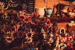 C & C giftshop (thegioicuahoang) Tags: flowers summer vintage sigma giftshop