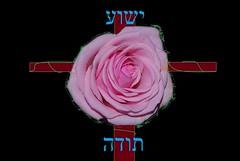 Yeshua Thanks (Jouni Niirola) Tags: thanks yeshua