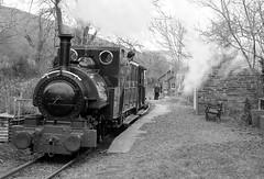 TR 43912bwcr (kgvuk) Tags: station trains railwaystation locomotive railways tr steamlocomotive northwales talyllyn brynglas narrowgaugerailway talyllynrailway 042st brynglasrailwaystation
