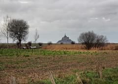 Approaching Mont Saint-Michel (skipmoore) Tags: france farmland normandy montsaintmichel