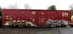 decor - combos (timetomakethepasta) Tags: rain cn train graffiti canadian national boxcar raining decor freight dwc combos