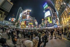 (akirat2011) Tags: japan tokyo shibuya
