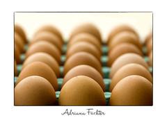 af0808_5069 ovos (Adriana Füchter ... thank you for 4 Million Views) Tags: food cooking hands comida salt alimento butter eggs sal maos ovos complexo frutería trufas manteiga lucianedaux