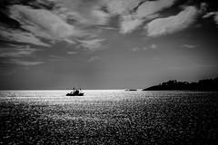 Going Home (MARKFREUDER) Tags: sea bw naturaleza blancoynegro monochrome blackwhite fuji paisaje fujinon pontevedra sanxenxo monocromatico blackwhitephotos xt1 xf1855mmf284rlmois fujifilmxt1