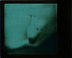 Musky (R. Drozda) Tags: sleeping dog film home alaska spring fairbanks beingthere polaroidsx70 musky instantfilm drozda impossibleproject labrusky huskadore littledoglaughednoiret blackgreen600duochrome roidweek2016