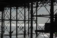 Under the Pier (rosejones1uk) Tags: seagulls seascape sunshine silhouette sussex pier seaside brighton seafront brightonpier