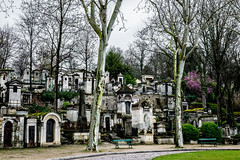Requiem for a century (Job I) Tags: city paris france cemetery stone century death europe rip graves marble requiem pere tombs lachaise deads