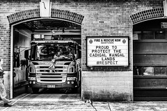 Proud to Serve.jpg (Pauls-Pictures) Tags: camera city people urban blackandwhite monochrome station truck lens fire photography fuji candid traditional country sydney australian engine photographers australia land fujifilm service lands language standard newtown department services brigade streetphotos energency compactcamera landsape streetphotographer streetpics streetphotograhy cadigal firies achromatic xt1 streetpictures wangal fxlens mirrorlesscamera australianstreetphotographers 35nmf14lens