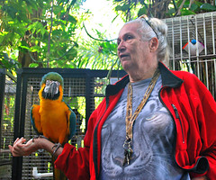 Key West (Florida) Trip 2015 0285Ri 5x6 (edgarandron - Busy!) Tags: bird birds keys florida parrot keywest cockatoo macaw floridakeys nancyforrester