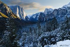 Yosemite - Be Thankful (Alfred J. Lockwood Photography) Tags: morning winter cliff snow nature forest landscape nationalpark yosemite granite halfdome yosemitenationalpark elcapitan tunnelview sierramountains alfredjlockwood