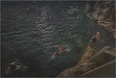 Bronte's swimmers (Peter & Olga) Tags: wideangle textures swimmers bronte rockpool oceanbaths d810 olgabaldock