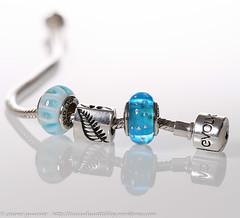 IMG_2867 (traccediscatti) Tags: life new fern still charm zealand murano zelanda nuova vetro gioielli argento felce bracciale accessori