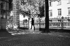 inside and outside (gato-gato-gato) Tags: street leica bw white black classic film blanco monochrome analog 35mm person schweiz switzerland flickr noir suisse strasse negro streetphotography pedestrian rangefinder human streetphoto manual monochrom zrich svizzera weiss zuerich blanc m6 manualfocus analogphotography schwarz ch wetzlar onthestreets passant mensch sviss leicam6 zwitserland isvire zurigo filmphotography streetphotographer homedeveloped fussgnger manualmode zueri strase filmisnotdead streetpic messsucher manuellerfokus gatogatogato fusgnger leicasummiluxm35mmf14 gatogatogatoch wwwgatogatogatoch streettogs believeinfilm tobiasgaulkech
