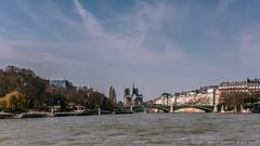 _DSC7489 (workers99) Tags: bridge paris france riverseine