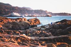 Point-Lobos-52 (hotcommodity) Tags: ocean california sunset hiking highway1 pacificocean beaches goldenlight bigsurcoast pointlobosstatenaturalreserve
