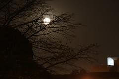 Lua cheia no dia de So Jorge (quanaval_sp) Tags: brazil moon brasil night landscape paisagem sp noturna lua diadema