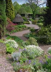 THE ROCK GARDEN (David~Preston) Tags: uk flowers england cheshire alpines therockgarden nessbotanicgardens thewirral thatchedsummerhouse