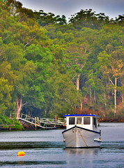 River (elphweb) Tags: trees river boat australia hdr