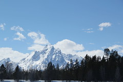 Mountains behind a frozen lake 7 (Aggiewelshes) Tags: travel winter snow mountains landscape scenery april snowshoeing wyoming jacksonhole colterbay frozenlake grandtetonnationalpark 2016 gtnp