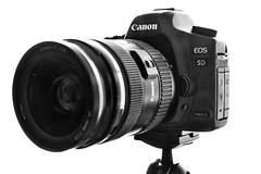 Canon EOS 5D Mark II (Mubarak Fahad) Tags: canon fujifilm highkey onwhite xt1 5dmarkii