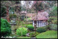Japanese Garden, Tatton Park, Cheshire (mancunian61) Tags: gardens japanese cheshire teahouse hdr tattonpark