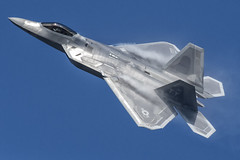 F-22 Raptor (Pete Fletcher Photography) Tags: nikon d500