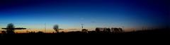 Dawn1 13th January 2016 (Gordon M Robertson) Tags: uk trees mars cloud silhouette sunrise dawn scotland aberdeenshire january pole cables bbc nightsky southeast jupiter 13th telegraph 2016 gordonrobertson stargazinglive