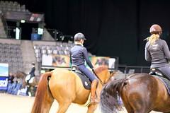 IMG_0981 (dreiwn) Tags: horse germany stuttgart grand prix pony german horseshow pferde pferd equestrian horseback reiten dressage 2015 reitturnier dressur pferdekopf dressuur junioren ridingarena pferdesport germanmasters doublebridle reitplatz reitverein dressurreiten dressurpferd kandare turnierreiten dressurprüfung grandprixspecial