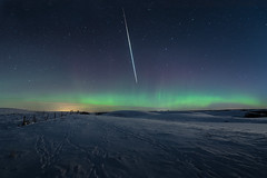 Fireball (Sandra Herber) Tags: winter snow canada night stars alberta auroraborealis