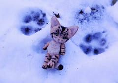 That can't be mine... (pianocats16, miau...) Tags: winter snow cute felted cat handmade footprints kitty