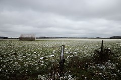 restes de neige (Nicolas Fourny photographie) Tags: snow france canon landscape horizon country sigma neige paysage campagne 18200 hautemarne beautifullandscape paysdelangres