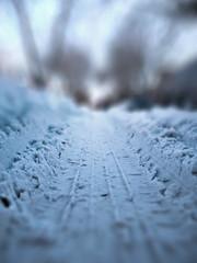 tire tread depth (Jovan Jimenez) Tags: tire tread depth canon eos xsi rebel snow winter bokeh bokehful efs1855mm efs 1855mm 450d shallow field shallowdepthoffield landscape cinematic cinematography atmospheric dslr explored explore