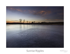 Sunrise Ripples (baldwinm16) Tags: morning winter ice nature weather sunrise landscape outside outdoors frozen illinois midwest january il environment marsh habitat slough climate wintersunrise naturepreserve wetland frozenlake frozenpond winterlandscape winterscene naturelandscape