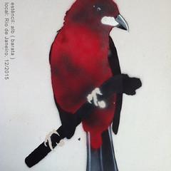 webIMG_3034 (Alvaro Barata) Tags: streetart stencil tie estencil tiesangue streetartrio