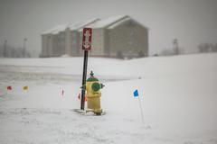 Hidrant (ruimc77) Tags: winter usa snow weather mi us nikon michigan 85mm kalamazoo af nikkor ifed f14d d810
