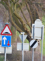 Daresbury Lane, Daresbury - signs - single file traffic (ell brown) Tags: greatbritain trees england signs tree sign village cheshire unitedkingdom daresbury halton singlefiletraffic daresburylane daresburyvillage daresburyconservationarea daresburyln