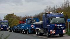 D - Daher MB Actros 3365 L08 (BonsaiTruck) Tags: truck lorry camion trucks mb lastwagen lorries lkw daher actros 3365