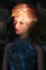 IMG_7676 (ShellyS) Tags: sung numina dollcis